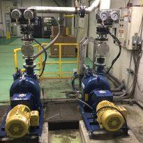 subaru-pumps